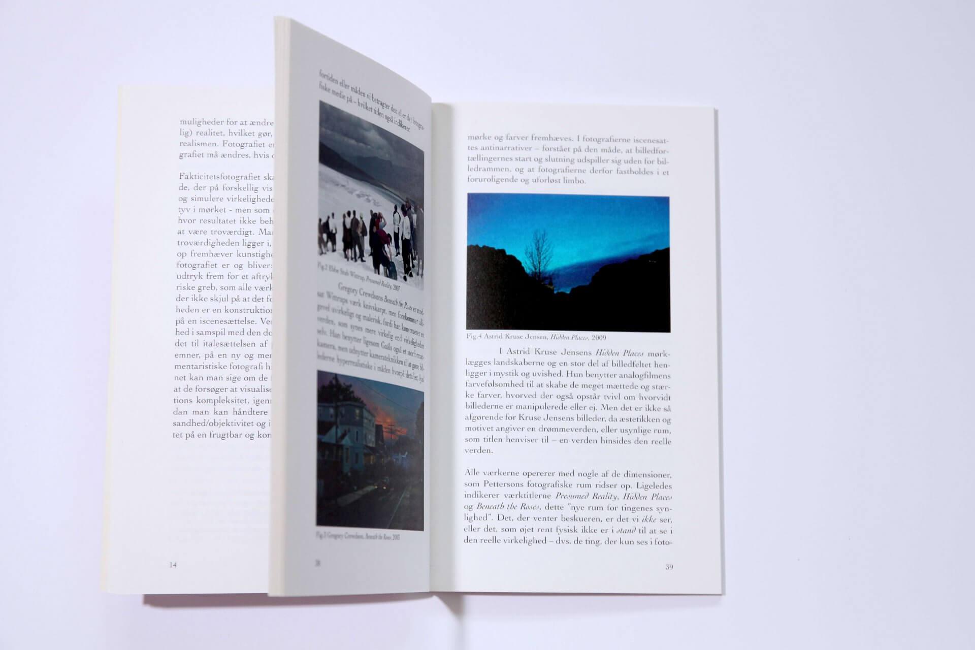På vej mod det fotografiske billede (2012)